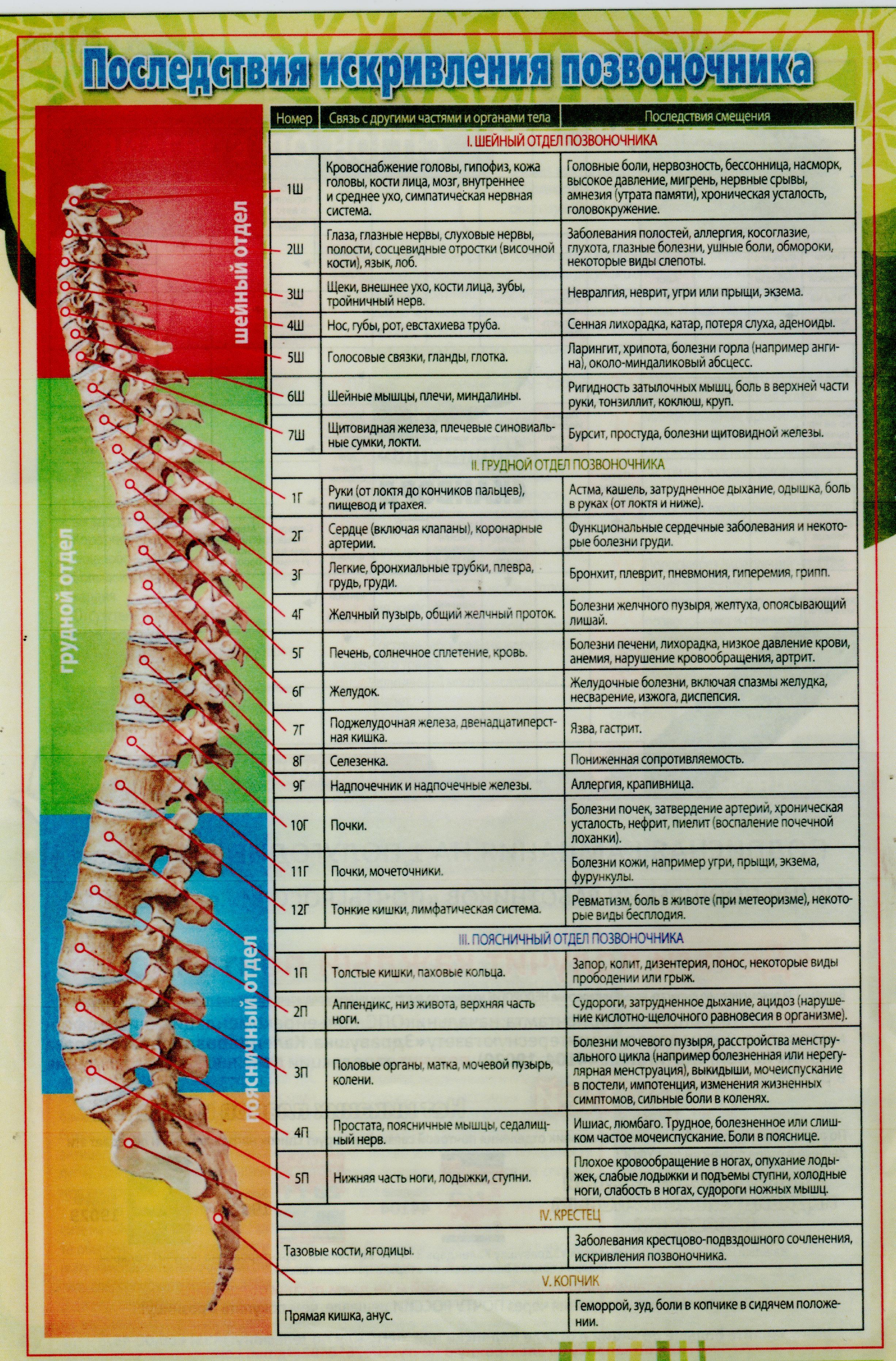 Препараты От Боли В Коленном Суставе